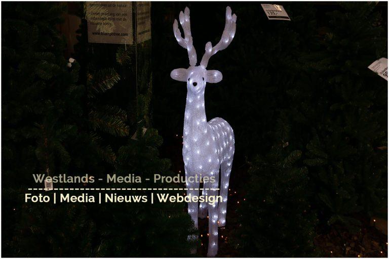 kerstshow Ockenburg_0009